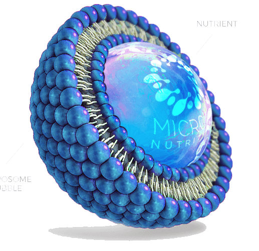 Vasayo Liposome Microlife Science - Advanced Delivery Technology